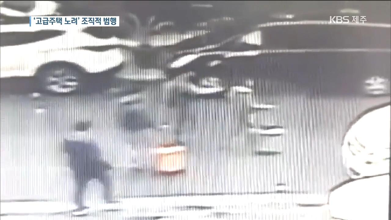 '고급 주택 노려' 중국 원정절도단 검거
