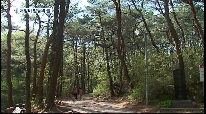 <포커스K ②>월평공원이 남긴 과제